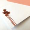 Greeting Card - Coral Orchids